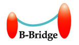 B-Bridge International, Inc.